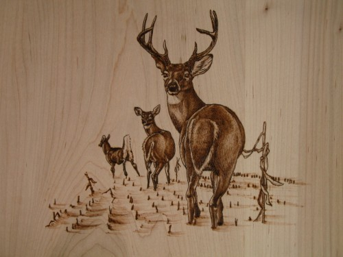 Custom Wood Burning Wood Burning Art Artisan Arts Amp Crafts