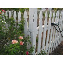 Build a Colonial Williamsburg style picket fence (free info)
