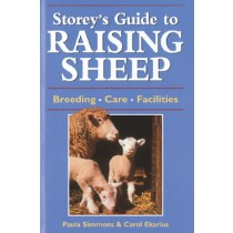 Raising Sheep