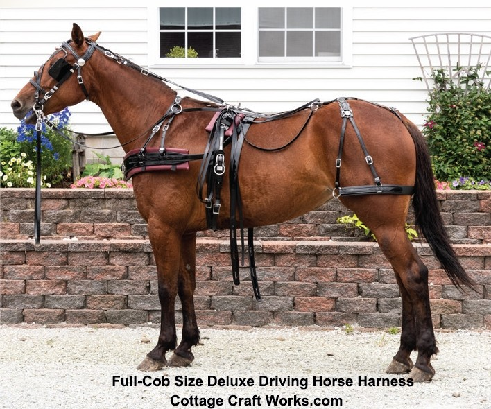 Deluxe Driving Horse Harness Gloss Finish
