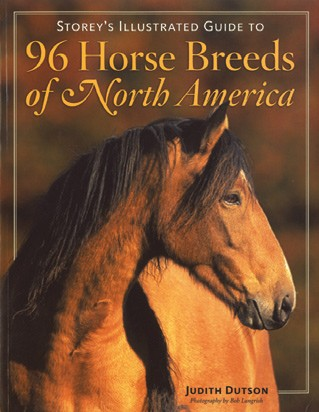 96 Horse Breeds of North America