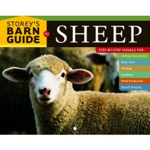 Storey Barn Guide to Sheep