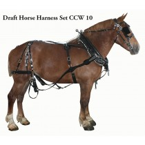 Horses | Draft Team BioThane Harness Set