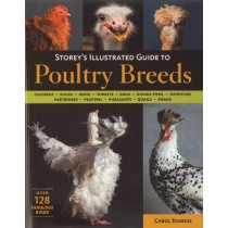 Illustrated Guide to Poultry Breeds