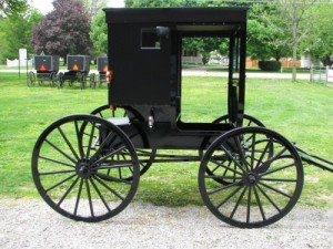 Amish Buggy | Back to Basis