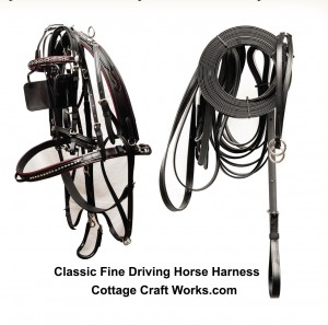 Horses | Fine Driving Show Harness