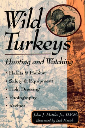 Wild Turkeys: Hunting And Watching